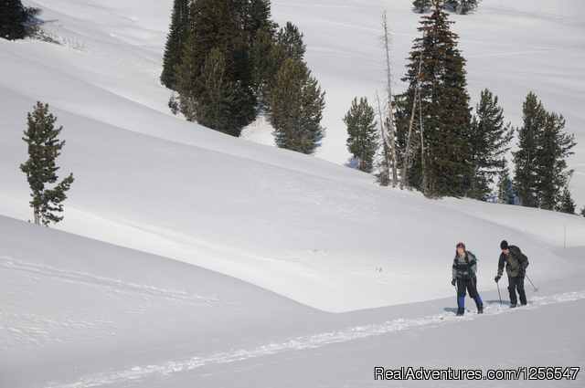Yellowstone Expeditions Snowshoe Tours West Yellowstone, Montana Snowshoeing