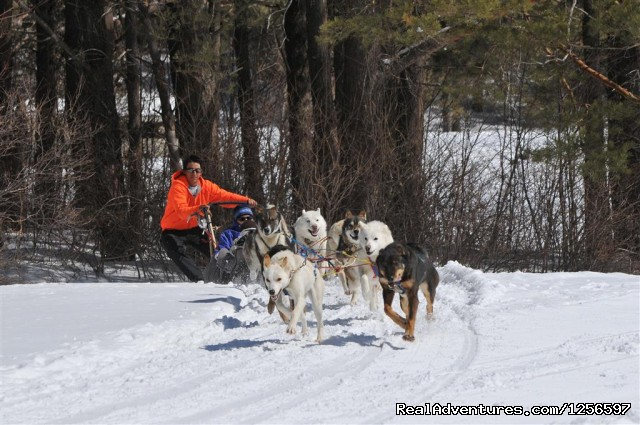 Muddy Paw Sled Dog Kennel Winter Dog Sledding Tour - Muddy Paw Sled Dog Kennel & Raft NH