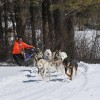 Muddy Paw Sled Dog Kennel & Raft NH