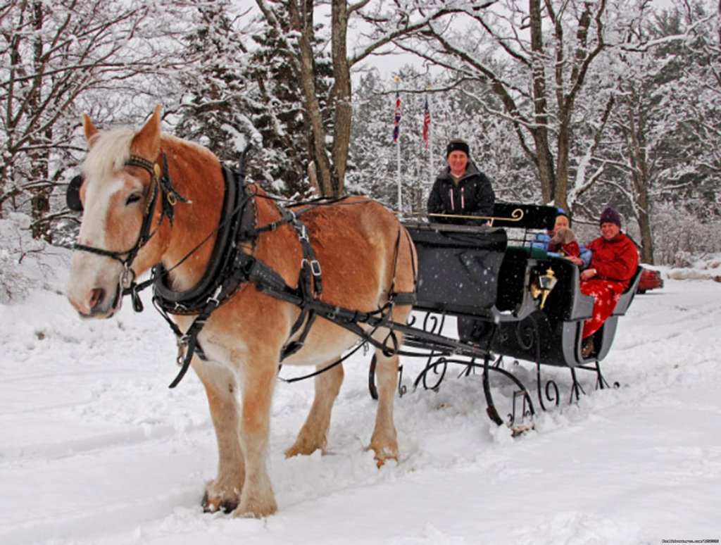 Victoriann sleigh ride for 2-4 people | Image #3/7 | Carriage/Sleigh Ride w/ Vacation Rental Home