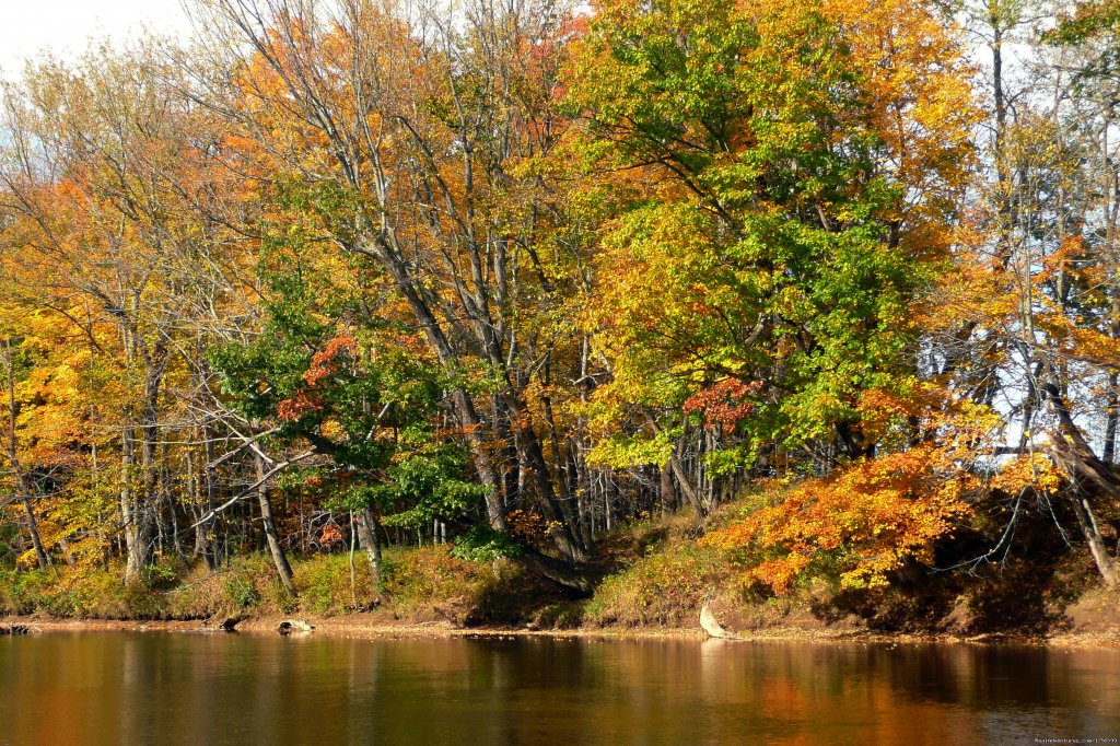 Farm by the River-Saco River frontage | Image #7/7 | Carriage/Sleigh Ride w/ Vacation Rental Home