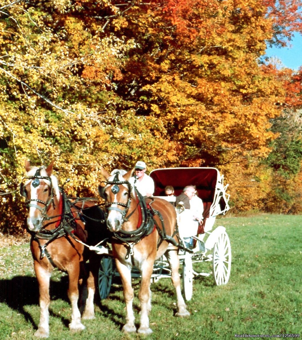 Fall Carriage Rides- Farm by the River with Stables | Image #6/7 | Carriage/Sleigh Ride w/ Vacation Rental Home