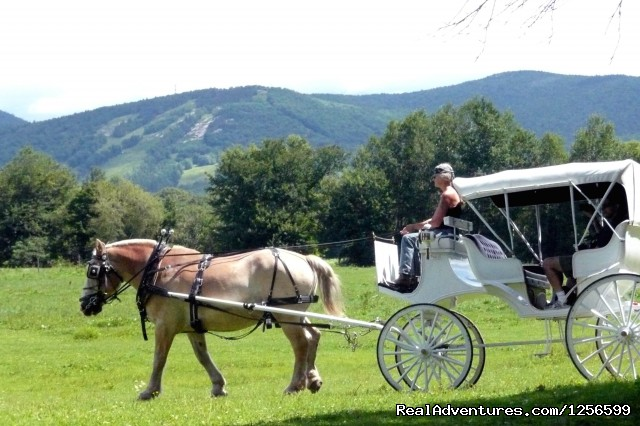 45 min. Carriage Rides - Horseback/Carriage/Sleigh Ride w/ Lodging Vacation