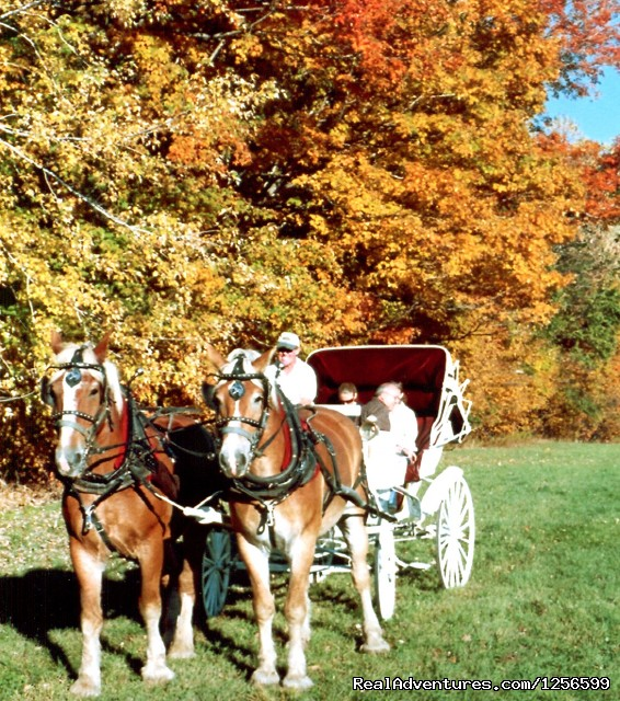 Fall Carriage Rides- Farm by the River B&B with Stables - Horseback/Carriage/Sleigh Ride w/ Lodging Vacation