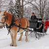 Horseback/Carriage/Sleigh Ride &Lodging Vacation