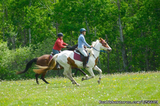 Horseback Riding - The Mountain Top Inn & Resort