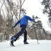 Solo Nordic Skier