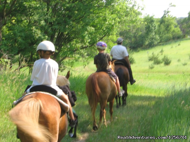 - Afternoon of riding trail on horseback