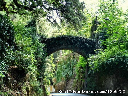 Image #6 of 26 - Portugal Hike: Sintra-Cascais Walking