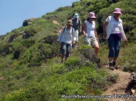Image #8 of 26 - Portugal Hike: Sintra-Cascais Walking