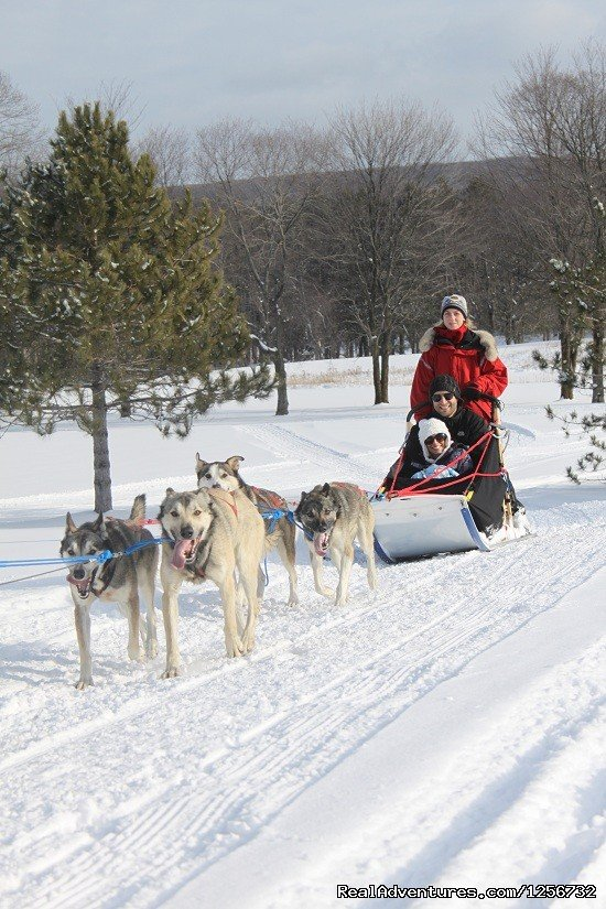 Rides at Boyne Highlands | Image #7/10 | Nature's Kennel Sled Dog Racing and Adventures