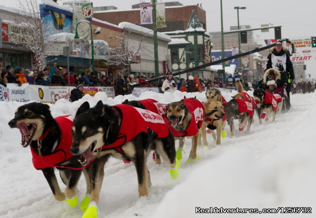 2012 Iditarod Team - Nature's Kennel Sled Dog Racing and Adventures