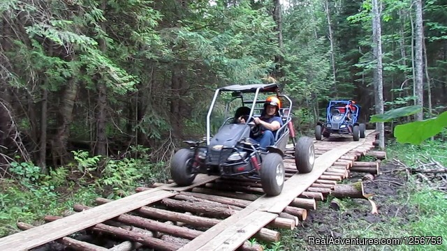 Off Road Dune Buggy tours - Ride a dogsled through a forest white with snow