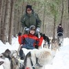 Ride a dogsled through a forest white with snow