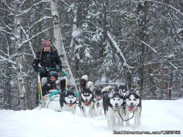 Escapade Eskimo Dog Sledding Quebec