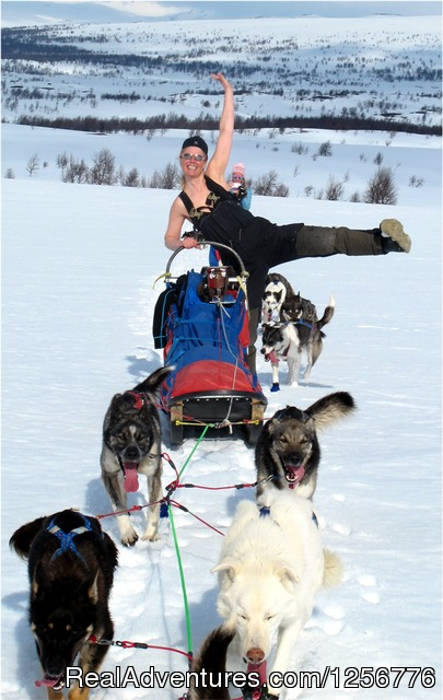 The Silent Way Nordic Wilderness Adventures Dog Sledding Sweden