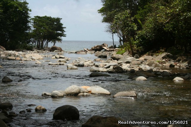 Riverside river to sea - Riverside Glamping in Dominica