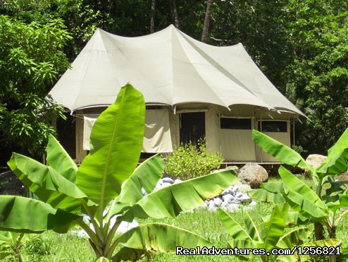 Riverside Glamping lodge : Ambazaman - Riverside Glamping in Dominica