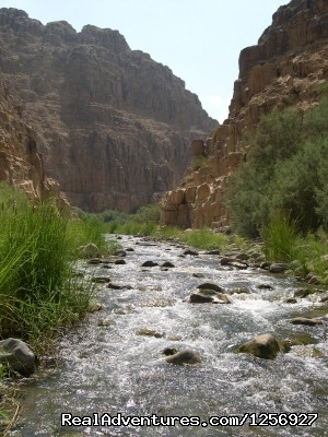 Wadi Mujib Reserve - Private, tailor-made tours of Jordan