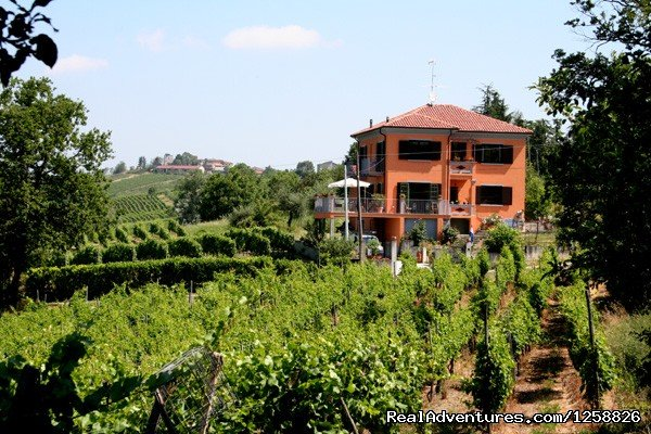 B&B in the beautiful wine region of Lombardy, the Oltrepo Pavese, south of Milan. Situated on a panoramic position in the hills, with pool, private terrace, garden. Sleeps up to 6. Dog friendly. Cooking class, culinary arrangement, wine tasting.
