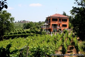 Holiday Home I Due Padroni - Wine region Milan Montecalvo Versiggia, Italy Vacation Rentals