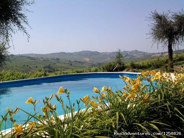 Pool with a View - Bed & Breakfast I Due Padroni - Wine region Milan