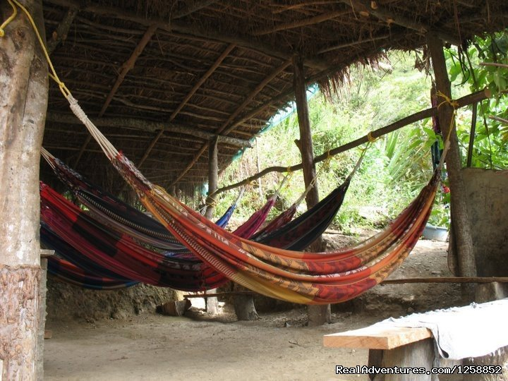 Hammocks to relax | Image #4/21 | Hike the amazing Inca Jungle trail to Machu Picchu