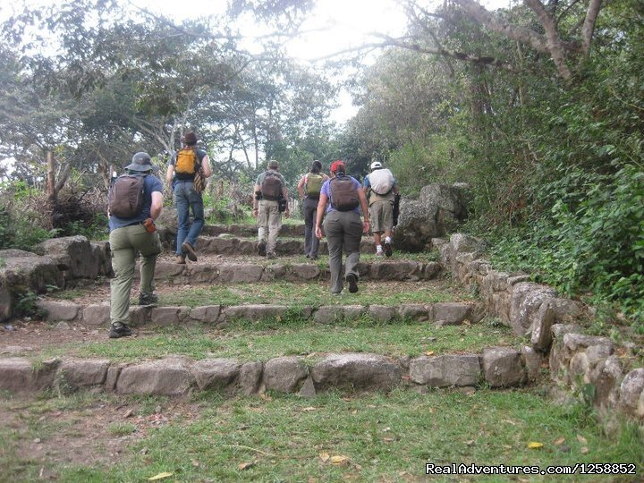 Inca Trail On Day 2& 3 | Image #21/21 | Hike the amazing Inca Jungle trail to Machu Picchu