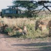 Africa Smart Safaris Limited