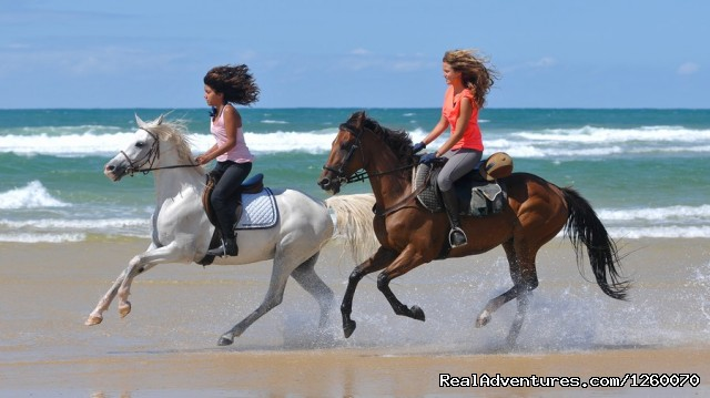Canter Atlantic Ocean - Ocean-Beach Riding Holidays of a different Kind