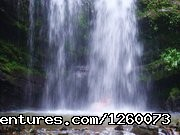 Jayuya Tours In Our Backyard (#8 of 18) - 2br Beach home Vacation Rental + Tours Dorado