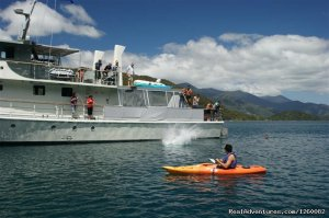 Cruise and explore New Zealand's pristine waters Picton, New Zealand Sailing & Yacht Charters