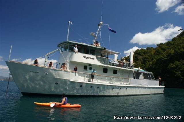 - Cruise and explore New Zealand's pristine waters
