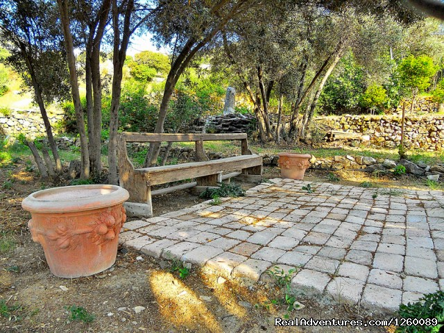 garden - Tinoshouse Holiday Rental on Tinos Island Greece