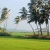 Sceinic Beauty of Kerala