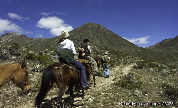 This trip to the most traditional highlands in the Mérida Mountain range, considered sacred sites by the pre-Hispanic populations, takes the traveler through its principle ecosystems, ecological strata, in the midst of the wide and majestic mountain