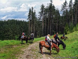 Rodopi Mountains, Bulgaria: On a Horseback In the Sofia, Bulgaria Horseback Riding