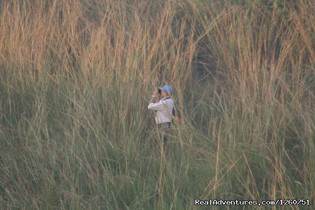 Birding for India - Birding in South Asia