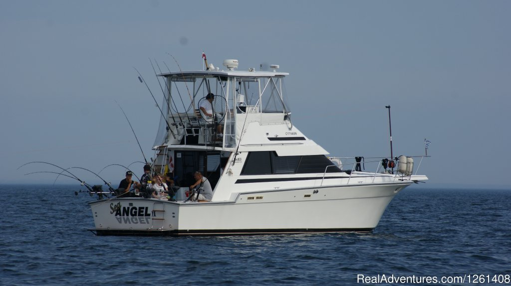 Fishing charters from Port Credit Mississauga aboard a 40 foot Luhrs SF loaded with the lattest electronics and fishing gear. We start May 15 till Oct 15..Besides group specials we also have individual fishing packages for those which cant get groups