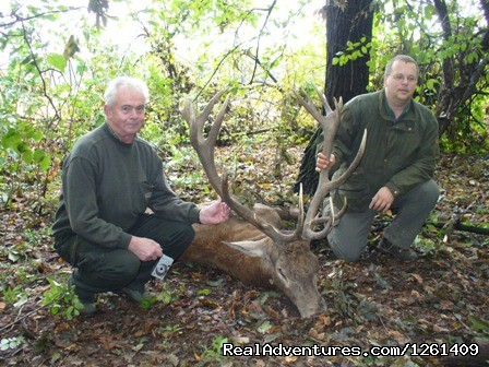Red deer hunting in Bulgaria-Karakuz - Hunting Trips to Europe-Bulgaria