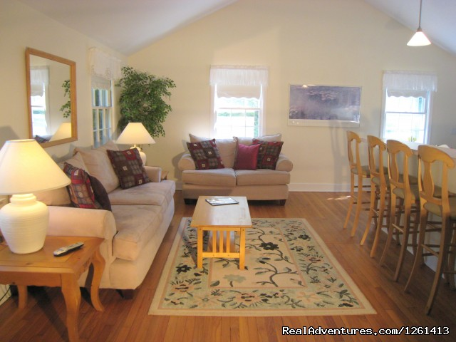 Brightly lit living room with vaulted ceilings - Charming & Private - Heart of East Hampton Village