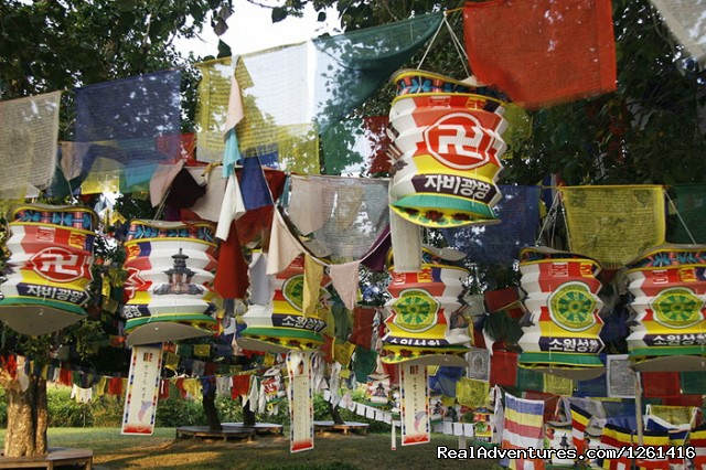 A mixture of Tibetan prayer flags and Korean lanterns near t (#5 of 8) - Visit Lumbini Birth Place of Lord Buddha