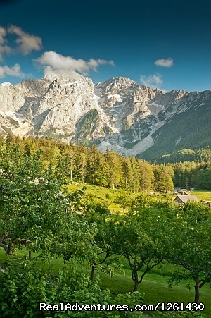 - Alpine Romp with 2 nights in Germany