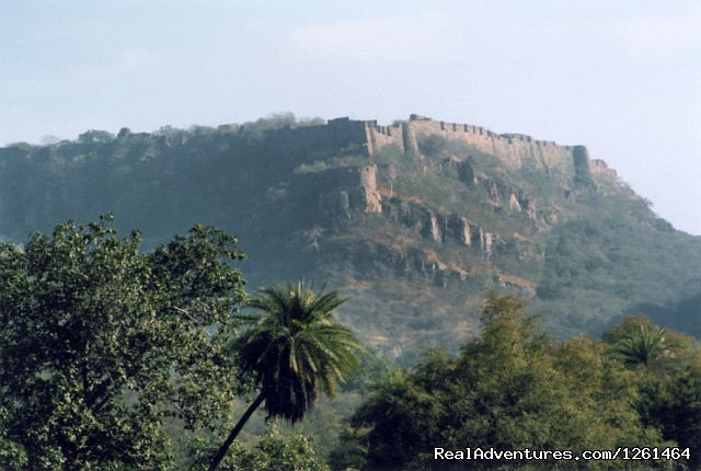 Citadel of the Forests - Tiger Safaris
