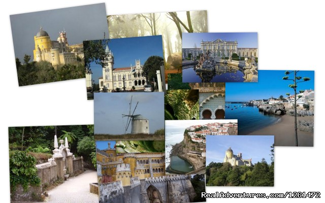 Portugal Vip Tours
