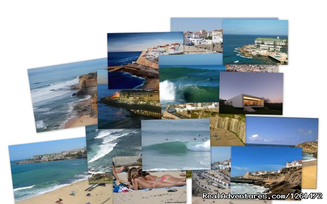 - Portugal Vip Tours