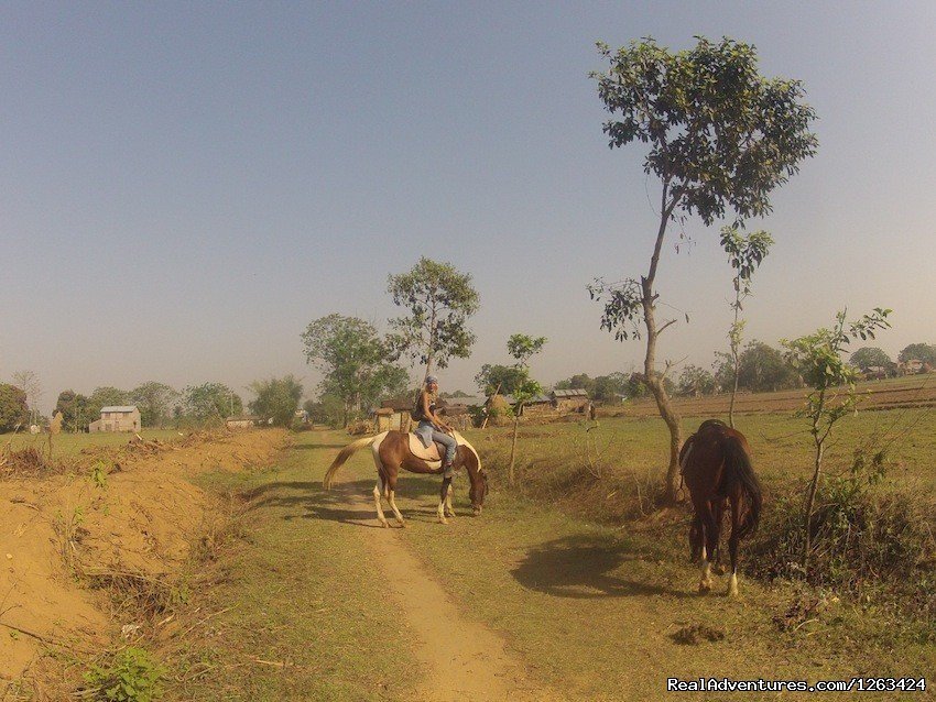 Going To Ghat Gai | Image #10/13 | Horseback Riding  yoga and reiki in Nepal