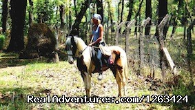 Sandokan And Equestrian Guide - Horseback Riding  yoga and reiki in Nepal