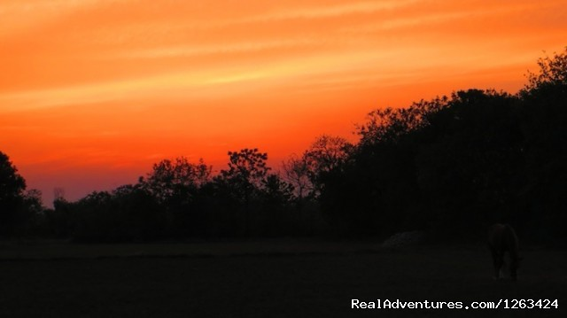 sunset of Budhanagar - Horseback Riding  yoga and reiki in Nepal