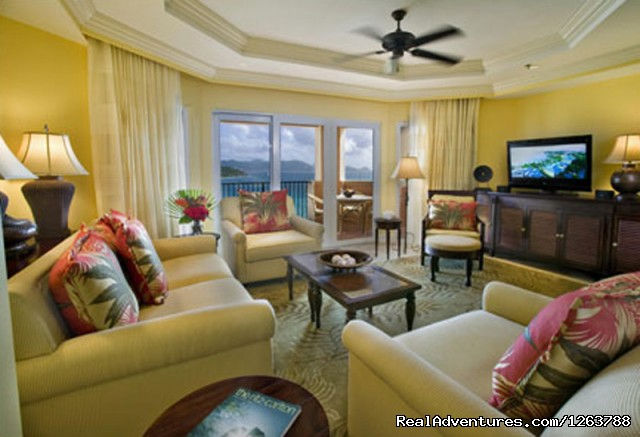 Living Room - Luxurious Carlton Club Condo US Virgin Islands